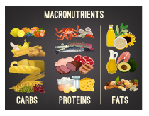 What Are Macronutrients And Why Are They So Important In Strength Training Straight Fitness